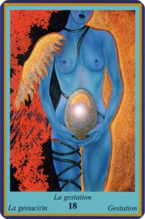 Oracle Bleu- carte La gestation