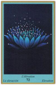 Oracle bleu: la carte L'Elévation