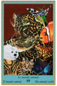 Oracle bleu: la carte Le Monde Animal