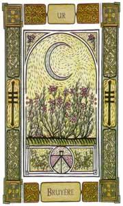 Oracle celte des arbres: la carte la bruyère