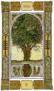Oracle celte des arbres: la carte le if