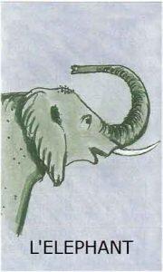 Oracle chance: la carte Eléphant