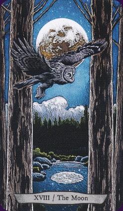 Tarot animal Totem carte la Lune