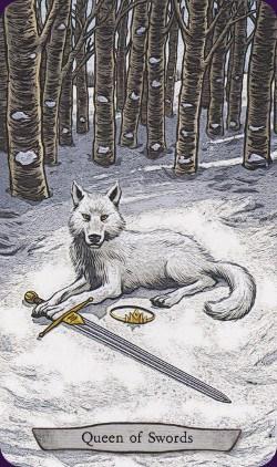 Tarot Animal Totem carte queen of swords