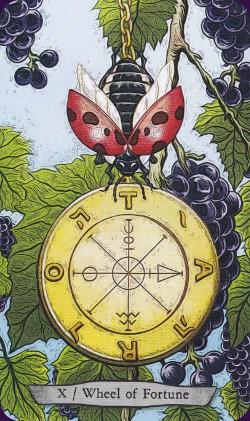 Tarot Animal Totem carte la roue de la fortune