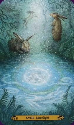 Tarot de la forêt enchantée: carte Moonlight