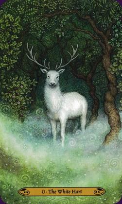 Tarot de la forêt enchantée: carte the white hart