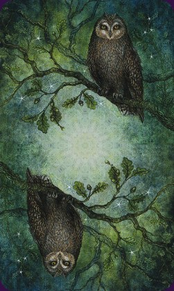 Tarot de la forêt enchantée: dos des cartes