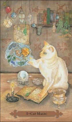 Tarot des chats mystiques: carte cat magic