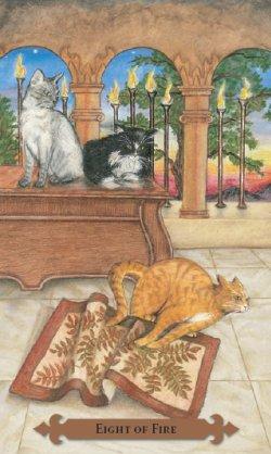 Tarot des chats mystiques: carte Eight of fire