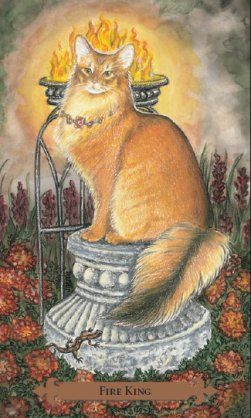 Tarot des chats mystiques: carte Fire King