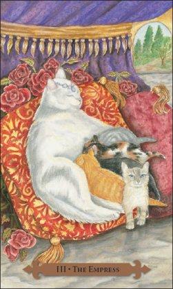 Tarot des chats mystiques: carte l'impératrice