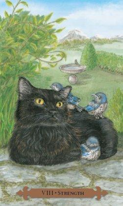 Tarot des chats mystiques: carte la force