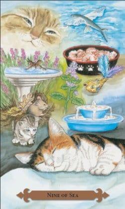 Tarot des chats mystiques: carte nine of sea