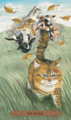 Tarot des chats mystiques: carte six of sky