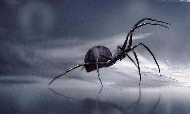 Pourquoi rêver d'araignée ?