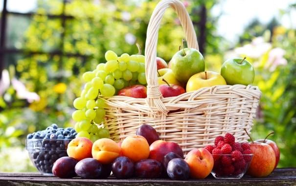 Pourquoi rêver de cueillir des fruits ?