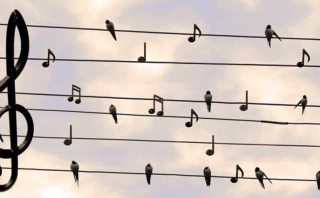 rêver de chanson