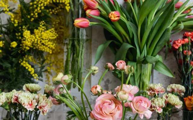 Signification des fleurs de A à Z
